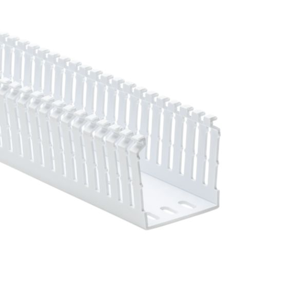 High Density Slotted Wall Wiring Duct, 2