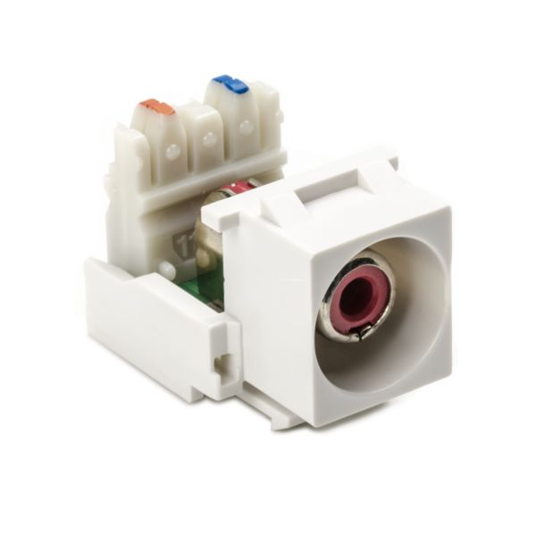 RCA-110 Connector Module With Red Stripe, White, 1/pkg