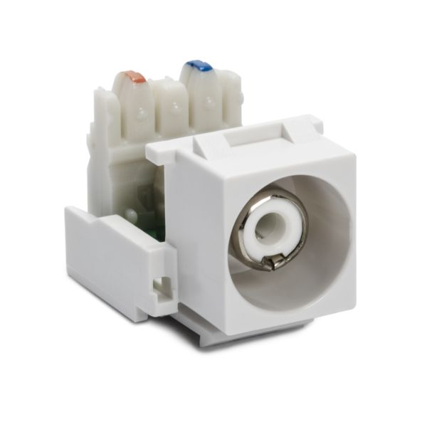 RCA-110 Connector Module With White Stripe, White, 1/pkg