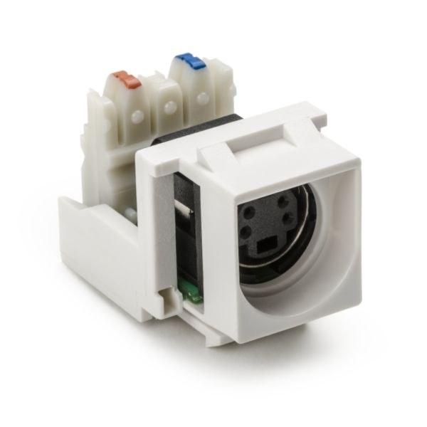S-Video to 110 Punch down Module, White, 1/pkg