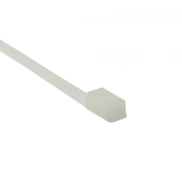 Double-Head Cable Tie, 12